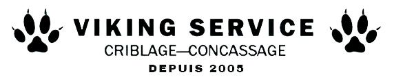 VIKING SERVICE